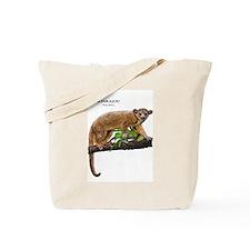 Kinkajou Tote Bag