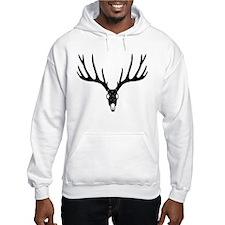 stag deer antler skull hunter hunting buck cervine