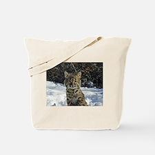Unique Wild cat Tote Bag