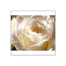 "Beautiful Roses! Square Sticker 3"" x 3"""