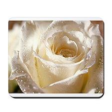 Beautiful Roses! Mousepad