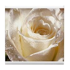 Beautiful Roses! Tile Coaster