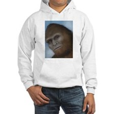 Bigfoot: The Unexpected Encounter Hoodie