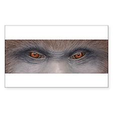 Sasquatch Eyes Decal