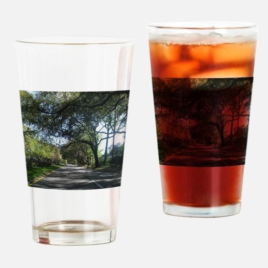 Savannah Georgia Drinking Glass