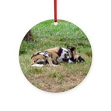 wild dog Ornament (Round)