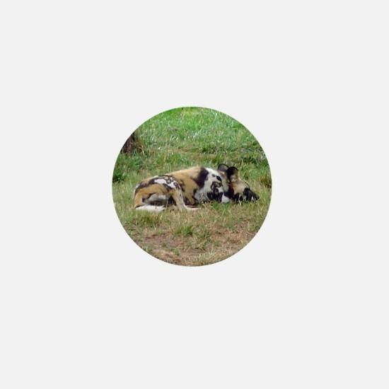 wild dog Mini Button