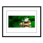 Frog Watercolor Painting Large Framed Print