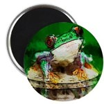 "Frog Watercolor Painting 2.25"" Magnet (10 pack)"