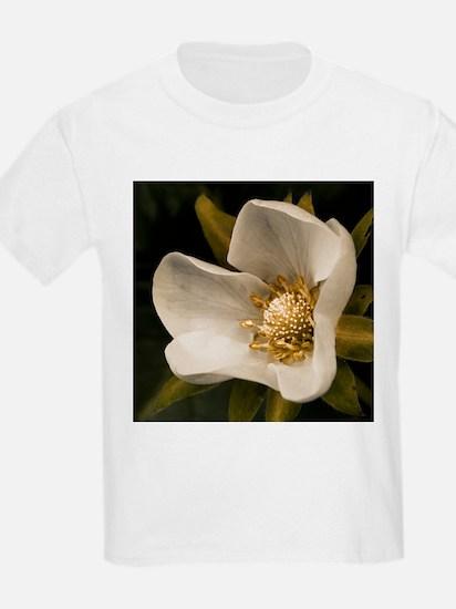 Strawberry flower T-Shirt
