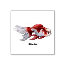 Oranda Goldfish Logo Sticker