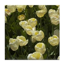 White Tulips Tile Coaster