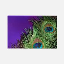 Purple Foil Peacock Rectangle Magnet