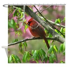 Blossoming Cardinal Shower Curtain