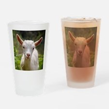 Baby goat Drinking Glass