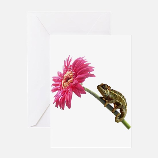 Chameleon Lizard on pink flower Greeting Card