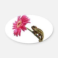 Chameleon Lizard on pink flower Oval Car Magnet