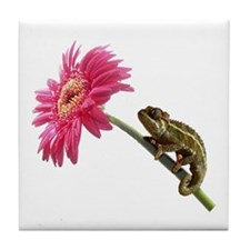 Chameleon Lizard on pink flower Tile Coaster