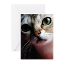 Happiness is a Singapura Cat Cards (Pk of 10)