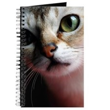 Happiness is a Singapura Cat Journal