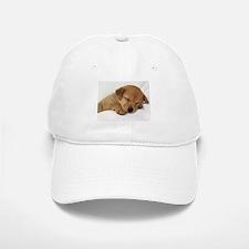 Cute Labrador Puppy Baseball Baseball Baseball Cap