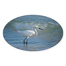 Snowy egret Decal