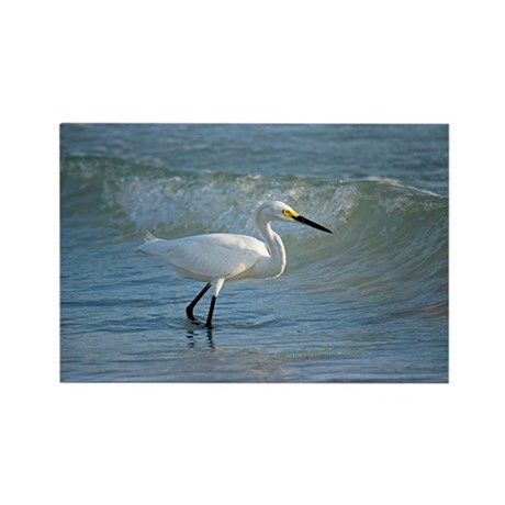 Snowy egret Rectangle Magnet (100 pack)