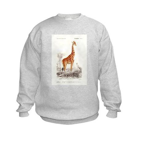 Antique 1849 French Giraffe Natural History Print
