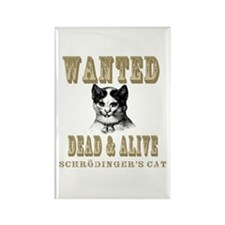 Schrodingers Cat Rectangle Magnet (10 pack)