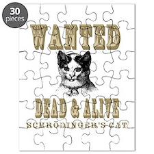 Schrodingers Cat Puzzle