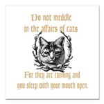 Affairs of Cats Square Car Magnet 3