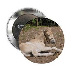 """""""Fjord Foal 1"""" Button"""