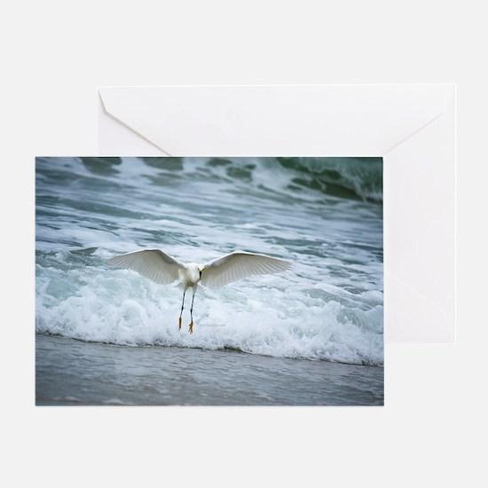 Born of sea-foam Greeting Card