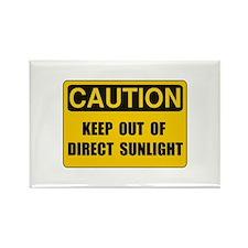 Direct Sunlight Rectangle Magnet (10 pack)