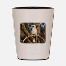 Kookaburra 9Y172D-002 Shot Glass