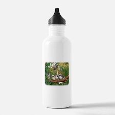 Kookaburra 9Y172D-004 Sports Water Bottle