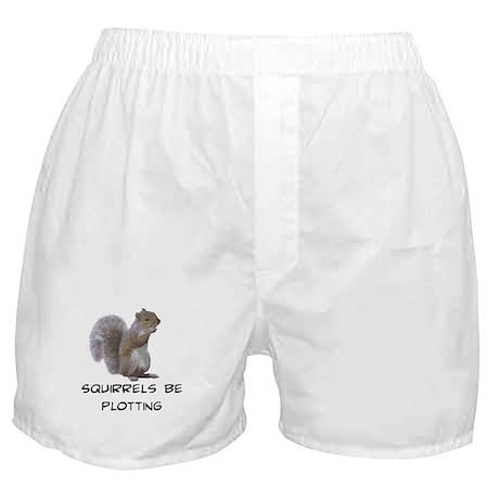 Squirrels Be Plotting Boxer Shorts