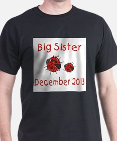 Big Sister Ladybugs 1213 T-Shirt