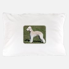Pied Currawong 9R023D-178 Pillow Case