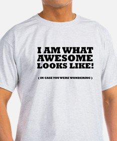 I am what awesome looks like! T-Shirt