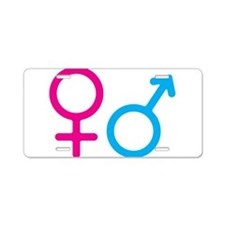 Female and Male Aluminum License Plate