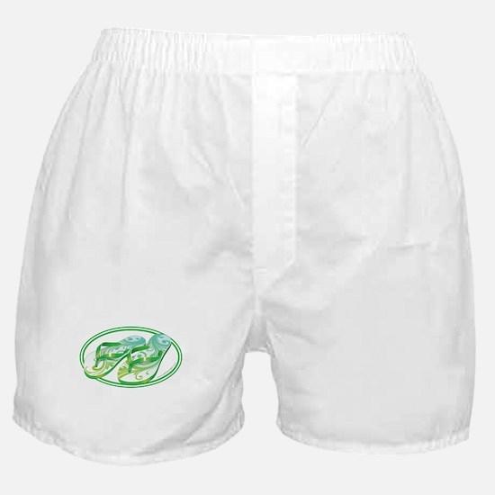 Beach Flop-Flops Gotcha Green Boxer Shorts