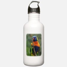 Rainbow Lorikeet 9Y209D-181 Sports Water Bottle