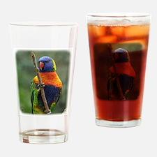 Rainbow Lorikeet 9Y209D-181 Drinking Glass
