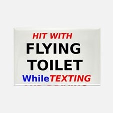 Hit with Flying Toilet while Texting and Driving R
