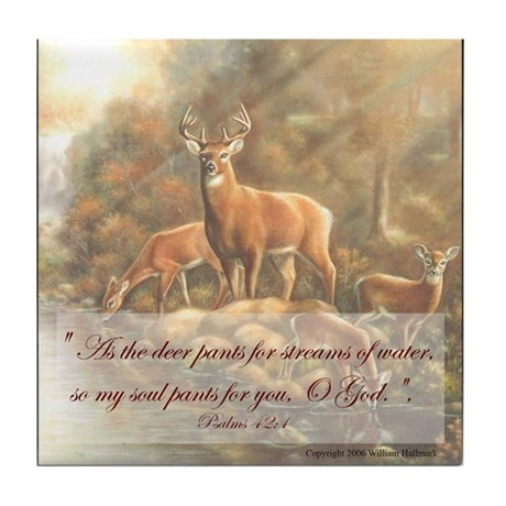 """My Souls Desire"" Fine Art Tile Coaster"