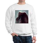 Horsehead Nebula Sweatshirt