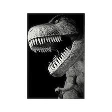 Tyrannosaurus Rex Rectangle Magnet