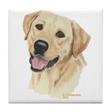 Dogtellow 2c chocolate and black lab Drink Coasters