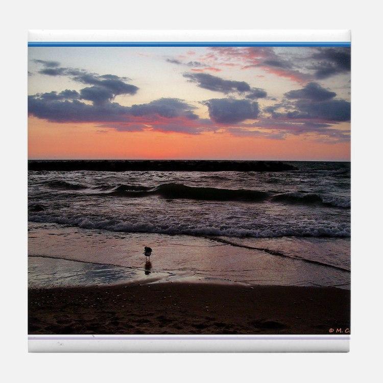 Sunset, seagull, photo! Tile Coaster